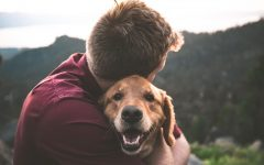 Why do people love their pets?